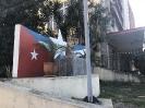Lengua rusa en Cuba_18